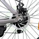Friendly_V3.2_250W_rear_brakes