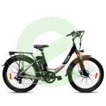 bicicletta-friendly-250